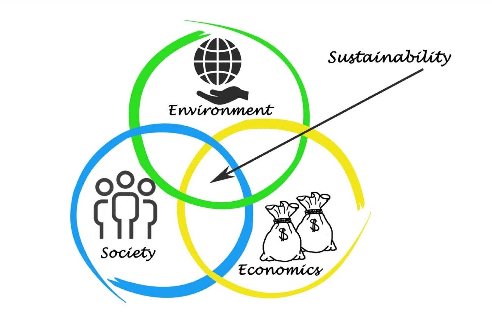 sustainability - CRANN - SUNGLASSES _ WATCHESIRELAND